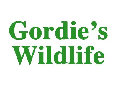 Gordie's Wildlife Logo