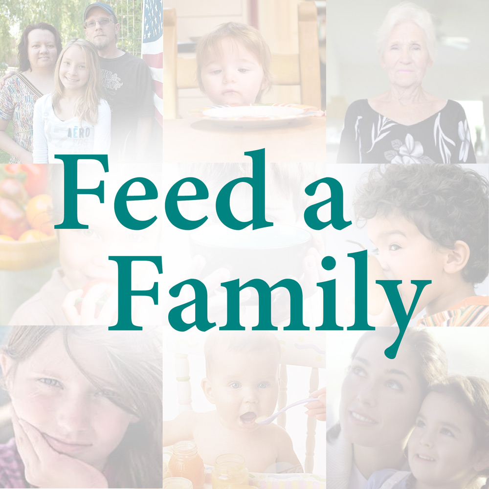 Donate to Feed a Family campaign